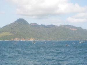 banyuwangi 1